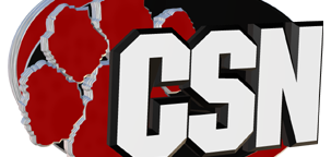 cropped-csnheader.png